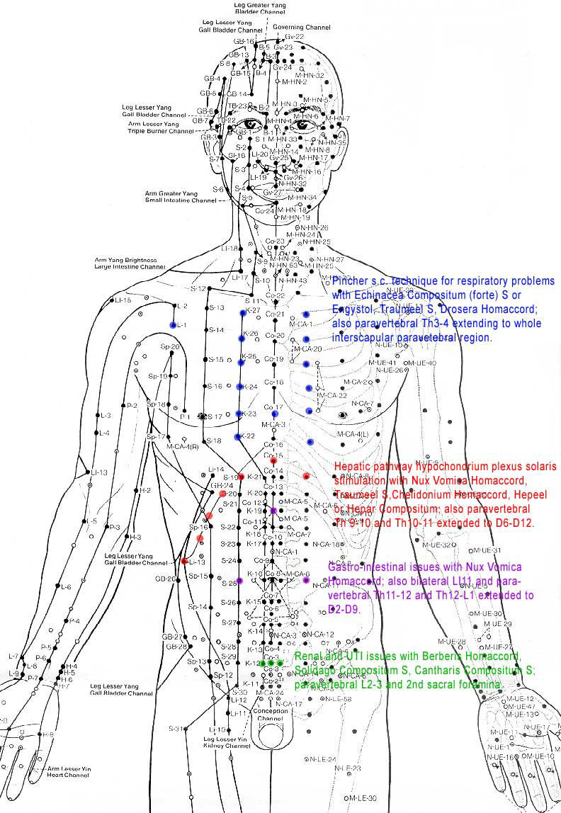Acupuncture Unblock Your Qi Ins And Outs