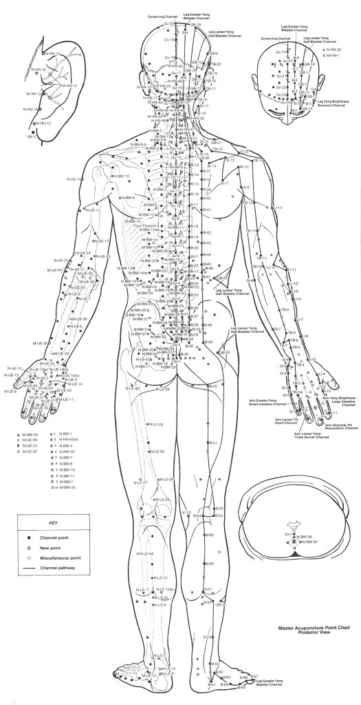 Acupuncture points - Back
