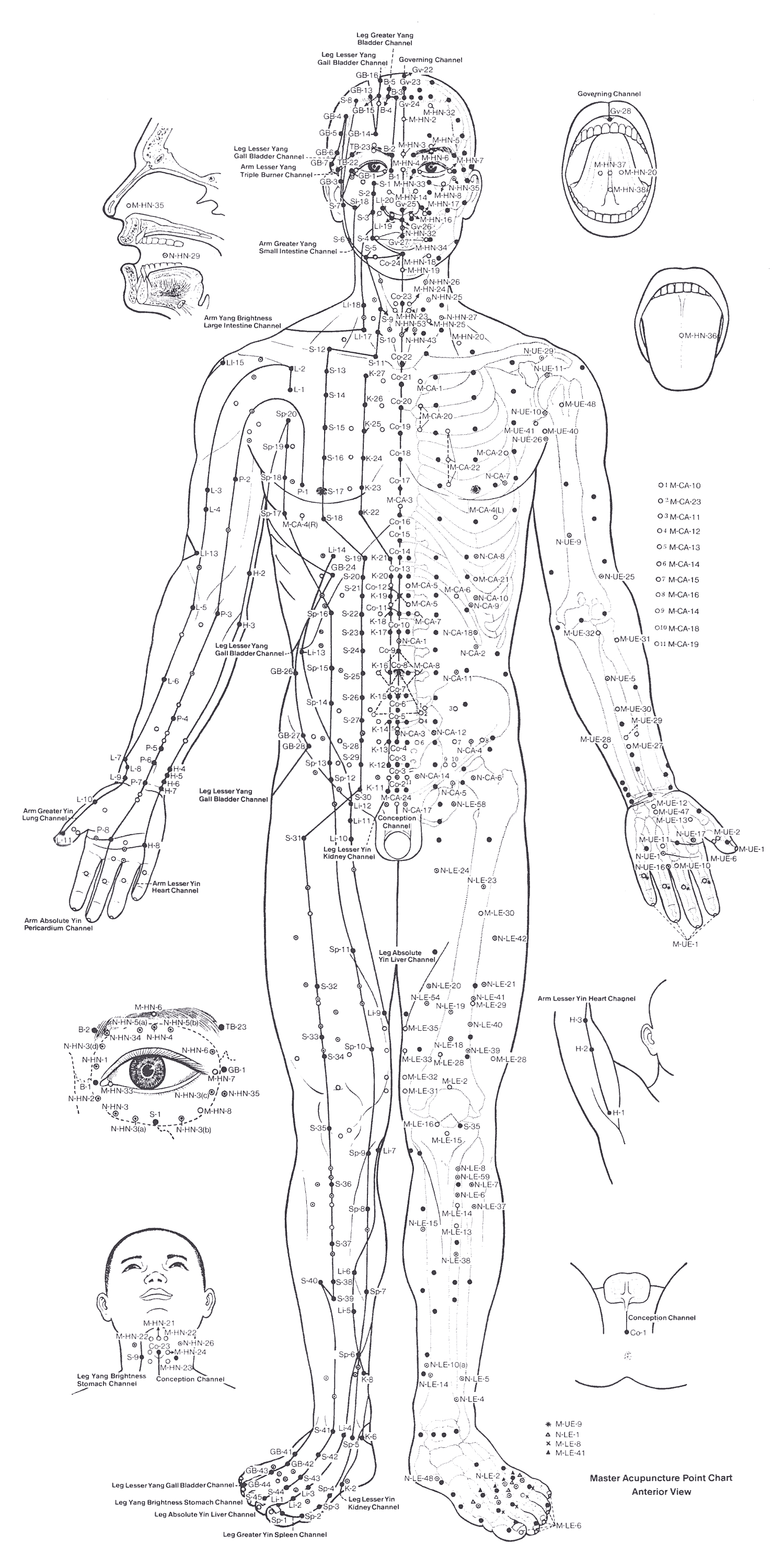 Acupuncture Points Chart  U2013 Front