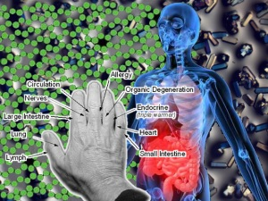 nanotech acupressure pain map